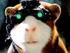 《豚鼠特攻队》预告片2