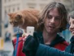 《流浪猫鲍勃》中文预告 街头艺人邂逅萌猫
