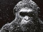 《猩球崛起3》中文先导预告 猩猩凯撒走向黑暗