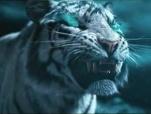 《封神道:哪吒闹海》先行版预告 猛虎秒变白鹤