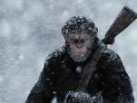 《猩球崛起3》国际版预告片 种族大战即刻打响