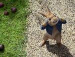 """《比得兔》""""萌兔登场""""预告 动物派对嗨翻农场"""