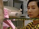 《黄金花》发布主题曲MV