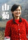 刘青-山菊