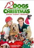 圣诞节的十二只狗狗