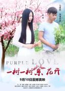 一树一树紫花开