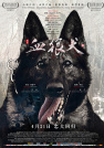 朱琳-血狼犬