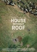 没有屋顶的房子