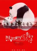 熊猫石的奇幻旅行