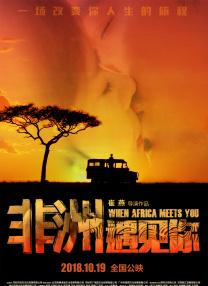 非洲遇见你
