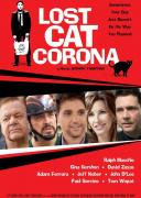 科罗拉丢失的猫
