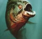 食人鱼3D#3