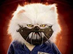 《猫狗大战2》当猫和狗开始合作并肩作战