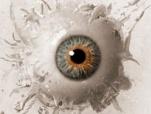 北美票房綜述:《靈動:鬼影實錄2》受沖擊僅居次