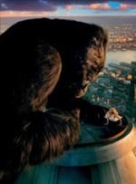 世界纪录电影长廊——延时动画
