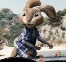 拯救小兔#4