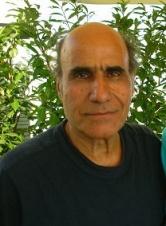 阿米尔·纳得瑞