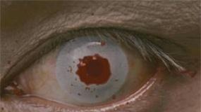 《龙门飞甲》新预告3D凶猛 春哥威武周迅回眸勾魂