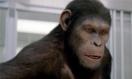 《猩球崛起》特辑 《阿凡达》技术重释科幻经典