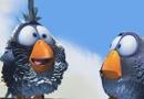 皮克斯经典短片《鸟!鸟!鸟!》