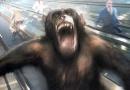 《猩球崛起》猩猩凯撒的监狱苦难