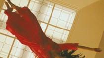 《我爸爸的房子》中文美版预告 墨西哥风情绕舌