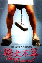 《鸡犬不宁》海报