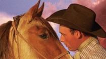 纪录片《野马》中文预告 演绎现实牛仔版《战马》