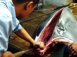 《寿司之神》吃货享受日本美食之旅