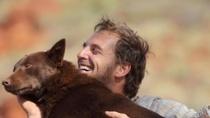 澳大利亚《红犬》中文预告 忠诚小狗演绎温馨故事