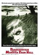 来自地狱的弗兰肯斯坦与怪物