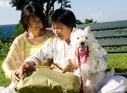 《我的狗狗我的爱》温情MV 可爱小狗化解母女恩怨