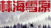 博纳发布2013年计划 徐克新片《林海雪原》曝光