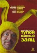 愚蠢的肥兔子