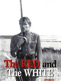 红军与白军