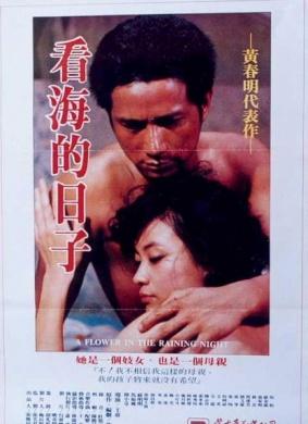1983臺灣高分劇情《看海的日子》DVDrip.國語中字