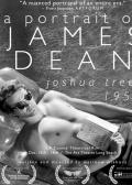 约书亚树1951:詹姆斯·迪恩的肖像