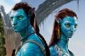 索尔达娜透露《阿凡达2》明年开拍 2015恐难上映