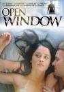 斯科特·威尔森-开窗