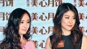 杨幂接受各种批评声音 陈慧琳不排斥儿子拍广告
