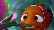 《海底总动员》经典片段 小尼莫欲逃出鱼缸险送命