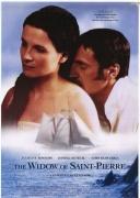 圣皮埃尔的寡妇