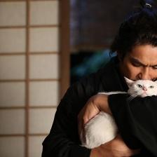 猫侍剧场版