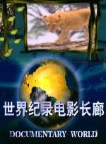世界纪录电影长廊-动物世界《开辟新天地》