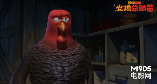 """《火鸡总动员》配角抢镜 """"呆萌蠢基""""来者不拒"""