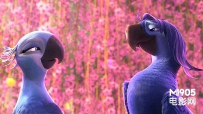 《里约大冒险2》简单温暖迷人 环保说教难下咽