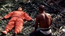 《红高粱》经典片段 巩俐被迫出嫁恋上轿夫姜文