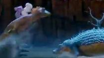 《考拉大冒险》曝中文预告 考拉骑蜥蜴大战鳄鱼
