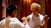 《永春白鹤拳》先导版预告 神秘画卷引发激烈争斗