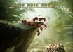 欧洲奇趣动画《昆虫总动员》定档 暑期档添猛将